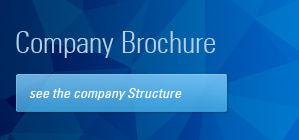 Company Brochure , see the company Structure